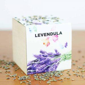 Levendula- Csak nyugi, lépj tovább