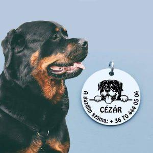 Kis kedvenc medál Rottweiler kutyának