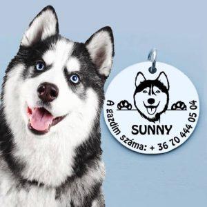Husky kutya biléta