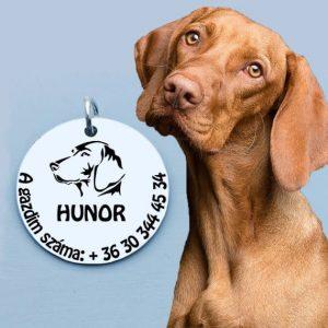 Kutya medál - Vizslás