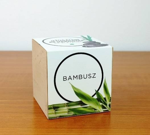 Bambusz - Egy kis nyugalom és harmónia az életedbe