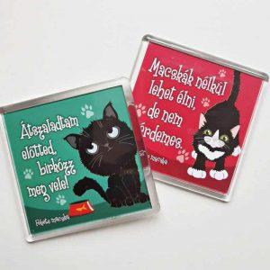 Macskás hűtőmágnes, cicás gazdiknak