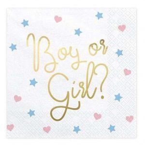 Boy or Girl szalvéta