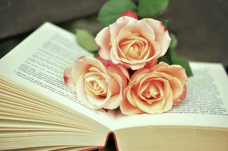 Könyvek az egészséges életmód témakörében