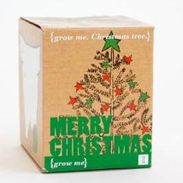 Karácsonyfa - Boldog Karácsonyt!