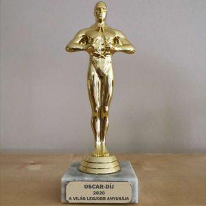 Oscar szobor gravírozással, Oscar-díj ajándék