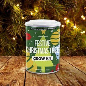 Karácsonyfa nevelő szett - legyen saját karácsonyfád
